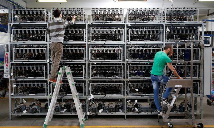 Eine Bitcoin-Farm in Florenz. Mit dem Lösen komplexer Rechenaufgaben erzeugen die Computer hier Kryptowährungen.
