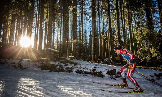 Bald auf neuen Wegen: Dominik Landertinger, Österreichs erfolgreichster Skijäger.