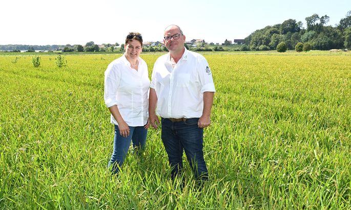 Adele und Franz Fuchs bauen mit ihrem Unternehmen Steirerreis schon länger Reis in der Südoststeiermark an. Diese Woche eröffneten sie nun ihre eigene Reismanufaktur.