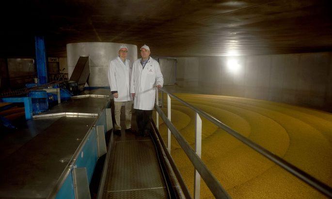 Michael Freudenthaler (li) und Achim Hanninger im großen Keim-Darr-Kasten (mit extrem hoher Luftfeuchtigkeit), in der Stadlauer Malzfabrik, in der seit kurz auch für Haushaltsgrößen abgefüllt wird.