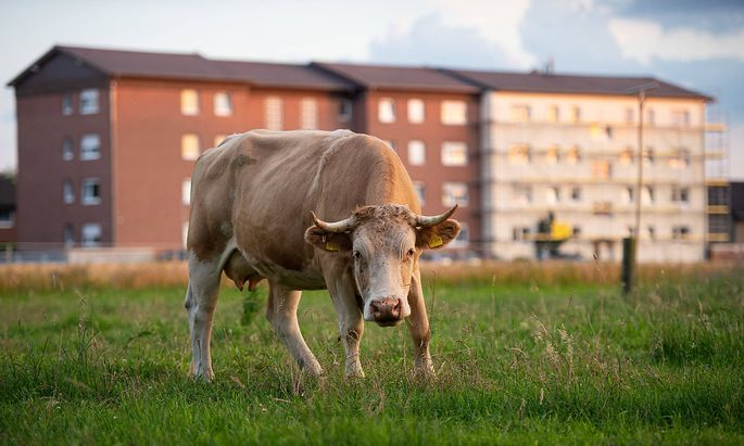 20.06.2020 - Coronavirus - Wohnsiedlung von Toennies-Mitarbeitern in Quarantaene: In Verl wurde eine gesamte Wohnsiedlung