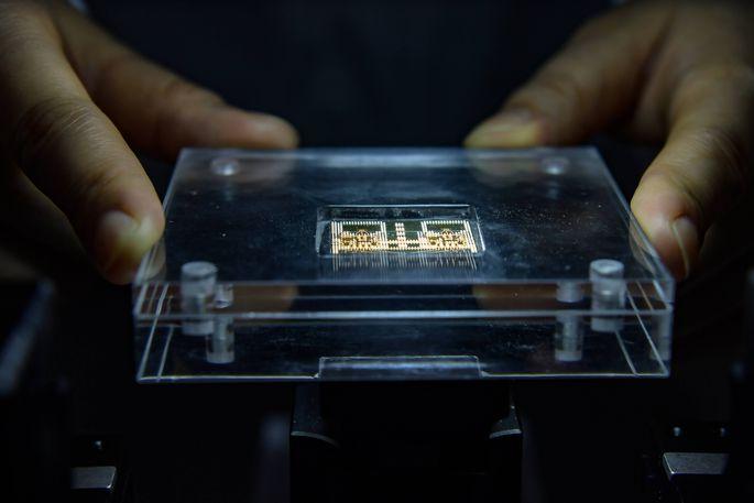 Daten werden mit Hilfe von sogenannten Magnonen verarbeitet und übertragen