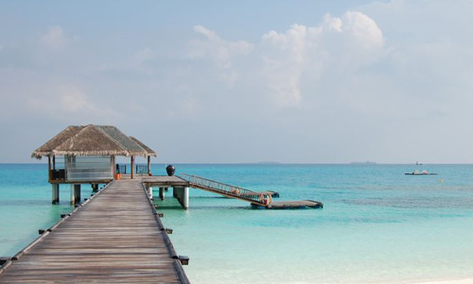 Malediven Diven Diver Dissidenten