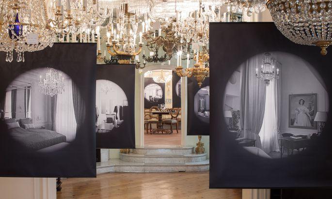 Wolfgang Thalers Bilder in der Salesianergasse