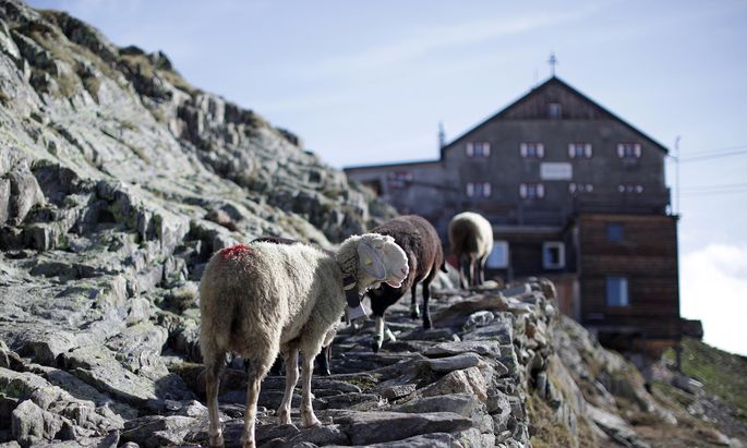 Einen Rechtsruck kann man auch in Südtirol beobachten.