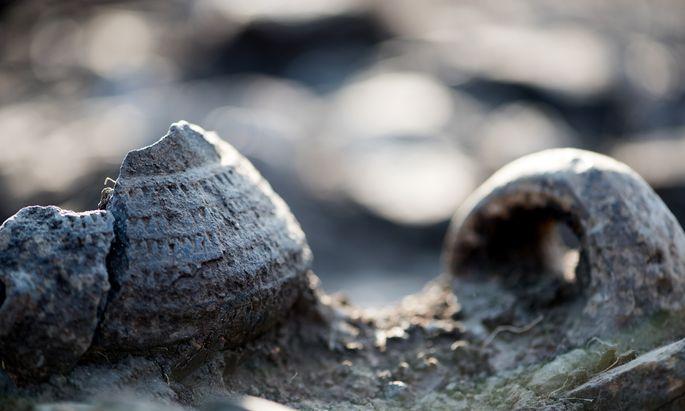 Unter bronzezeitlichen Funden stieß man auf jungsteinzeitliche Schichten.