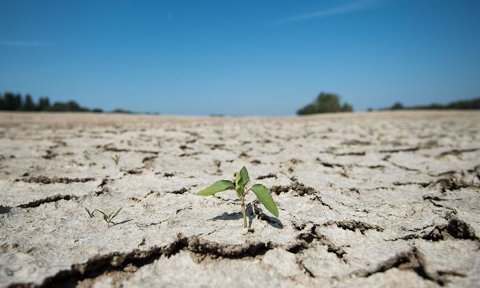 FILES-FRANCE-WEATHER-DROUGHT-HEATWAVE