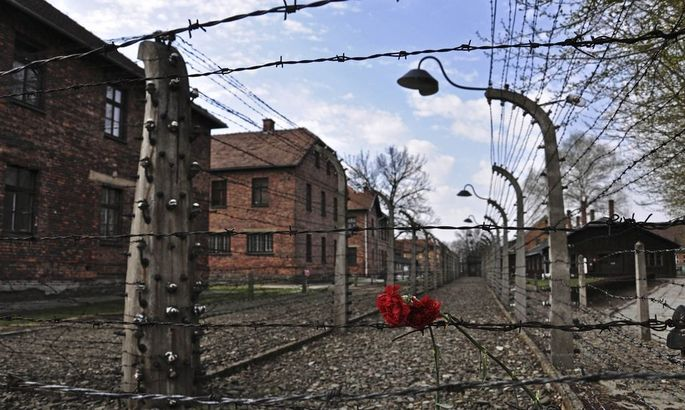 Carnations are placed on the barbed wire in the former Nazi death camp of Auschwitz in Oswiecim