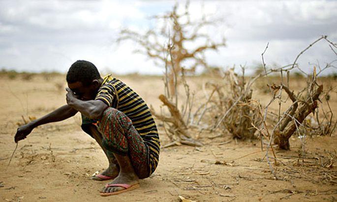 Duerre Afrika Millionen Menschen