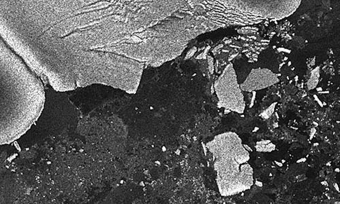 JapanTsunami liess Eisberg