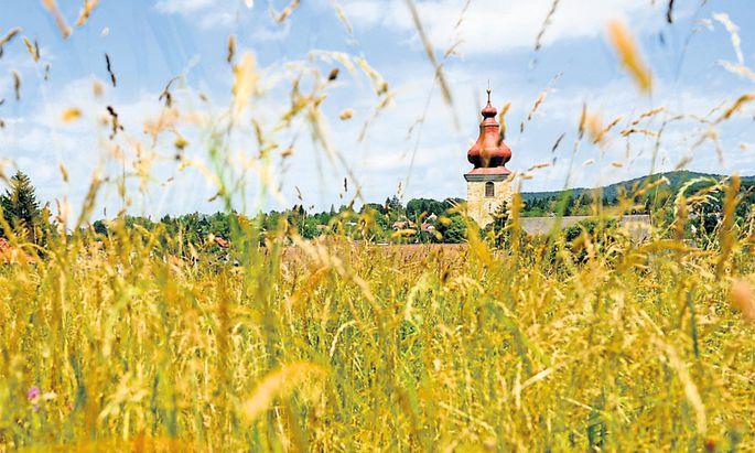 Die Landwirte machen den Anfang. Die Stromkunden müssen wohl noch einmal zahlen, um ihre Biogasanlagen zu retten.