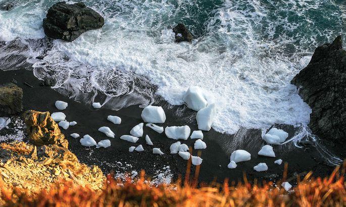 Besucher. Gletscher kalben und Eisberge machen sich auf den Weg.