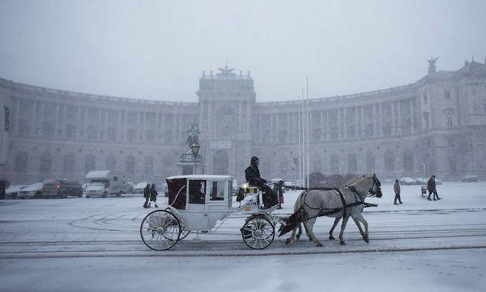 """Einst ging der Adel in der Hofburg ein und aus. Heute muss das republikanische Oberhaupt um die Silbe """"Van"""" im Namen zittern."""