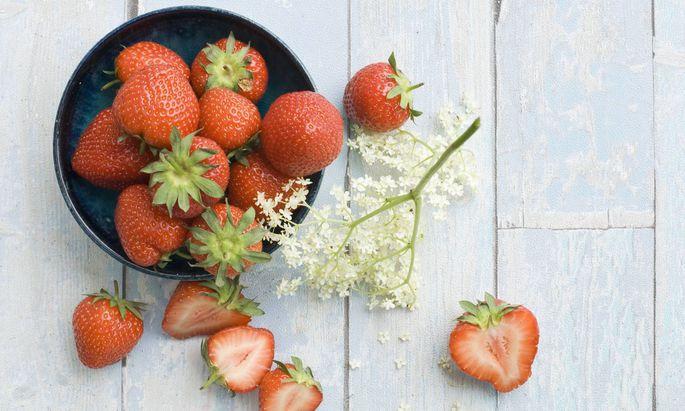 Erdbeeren mit Hollerblüte