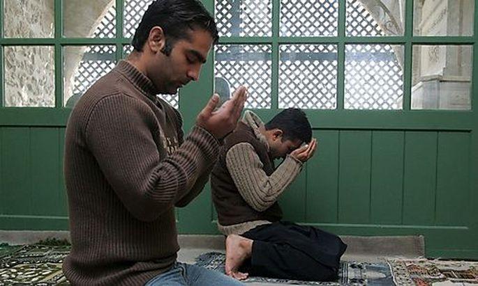 Muslime waehlen November ihre