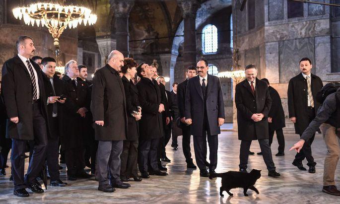 """""""Bringt die schwarze Katze Unglück?"""", fragten Nutzer sozialer Medien. Sie kreuzte den Weg, als Tsipras (Mitte) mit türkischen Regierungsvertretern die Hagia Sophia in Istanbul besuchte."""