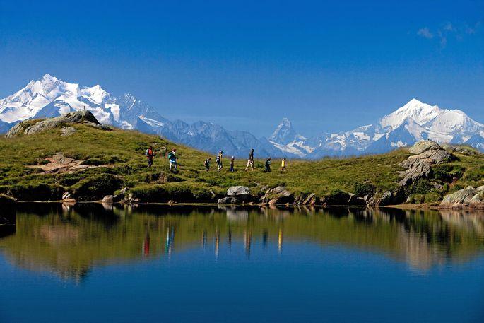 Im Schweizer Wallis findet man inneralpine Steppenlandschaften.