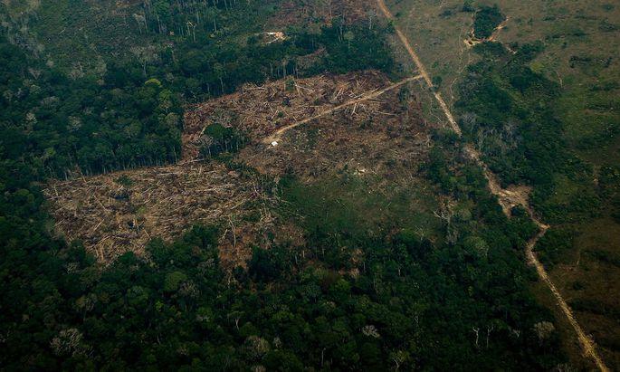 BRAZIL-FIRE-DEFORESTATION-AMAZON