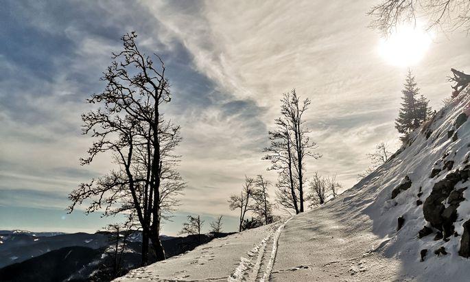Schneeschuhwanderung auf der Lachalm