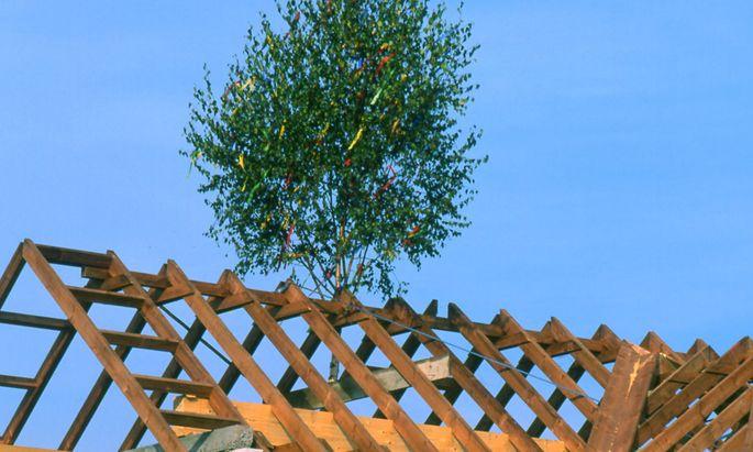 """Gute Energie auf der Baustelle: Die Dachgleiche ist geschafft. Wie gut das Gebäude dann """"funktioniert"""", wird sich erst zeigen."""