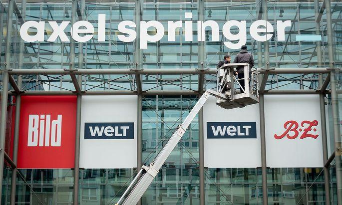 Bild Springer