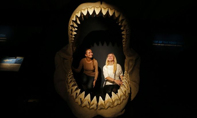Zwei Frauen in einem Megalodon-Gebiss bei einer Ausstellung in St. Petersburg im Jahr 2013.