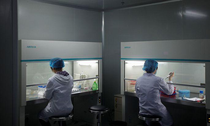 Symbolbild: Ein Labor im chinesischen Shenzhen