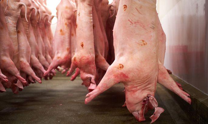 Symbolbild Schweinefleisch