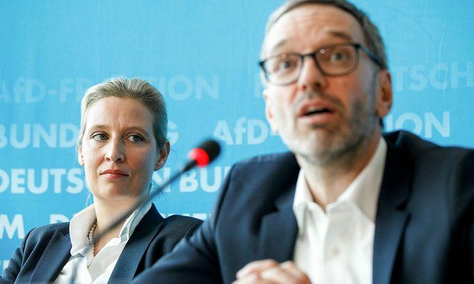 Herbert Kickl in Berlin mit AfD-Fraktionschefin Alice Weidel.