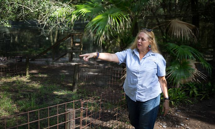 July 20, 2017, Tampa, FL, USA: Big Cat Rescue CEO Carole Baskin walks the property in Tampa in 2017. With the release of