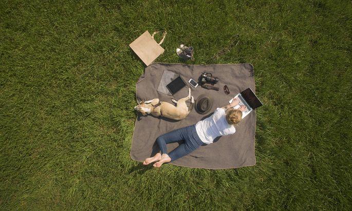 Frau mit Decke, Hund und Laptop auf Wiese