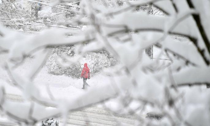Zahlreiche gesperrte Straßen konnten nach Abklingen der Schneefälle wieder freigegeben werden.