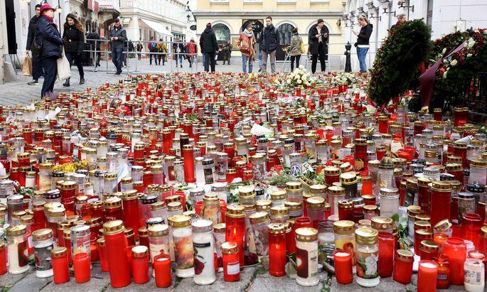 Schon im Dezember vergangenen Jahres hatte die Koalition ein Gesetzespaket als Reaktion auf den Anschlag im November in Begutachtung geschickt.
