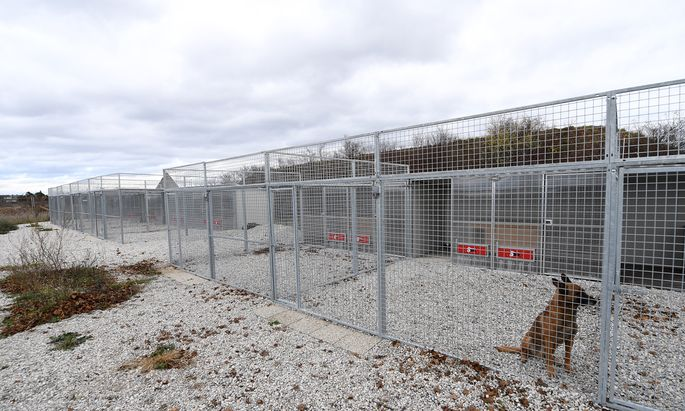 In der Flugfeld-Kaserne in Wiener Neustadt (am Bild) starb der 31-jährige Hundeführer des Jagdkommandos im November nach Hundebissen.