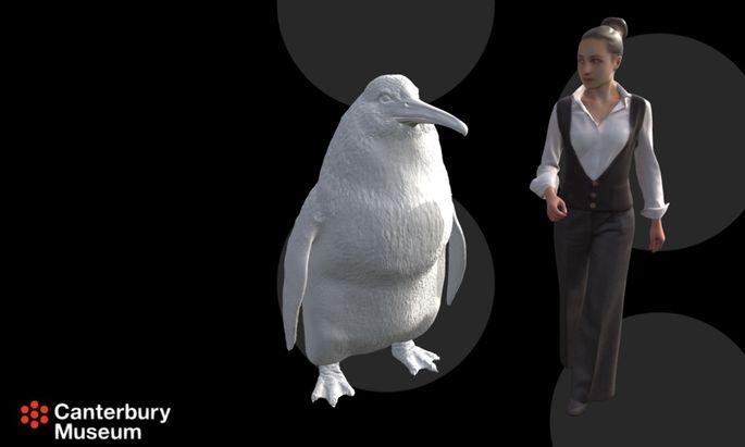 Der Crossvallia Waiparensis wurde mit ca 1,60 Metern Körpergröße fast so groß wie ein erwachsener Mensch.