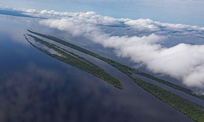 Amazonasgebiet in Brasilien