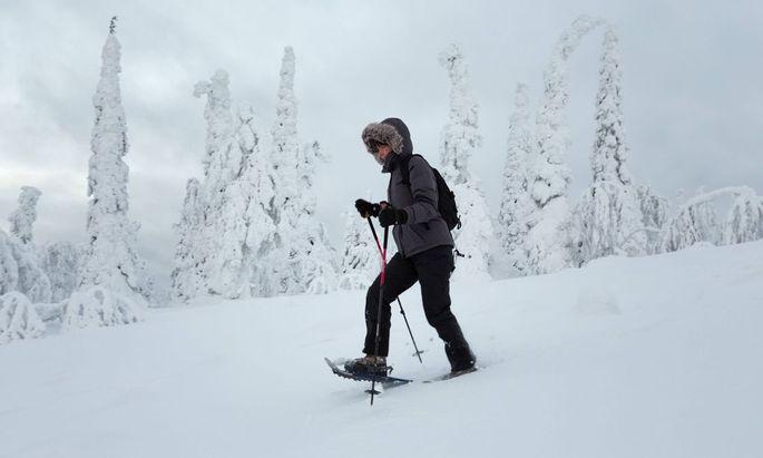 Europa Skandinavien Finnland Lappland Salla Sallatunturie Winter Frau wandert mit Schneeschuh