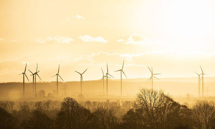 Grüne Energie ist gefragt wie nie.