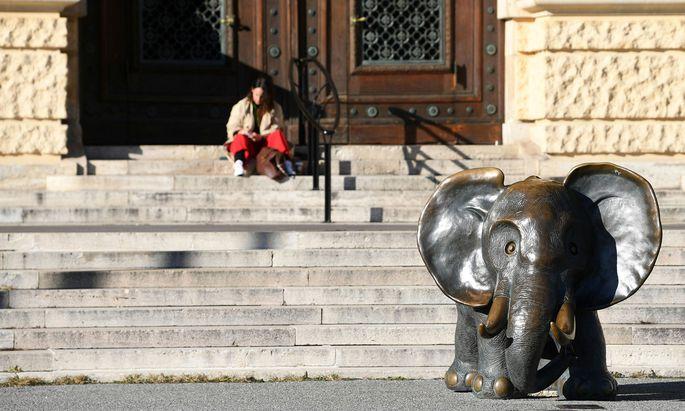 Nicht nur die meisten Geschäfte sind geschlossen, auch Museen (hier das Naturhistorische Museum in Wien) und Ausstellungen sind vom Lockdown betroffen.