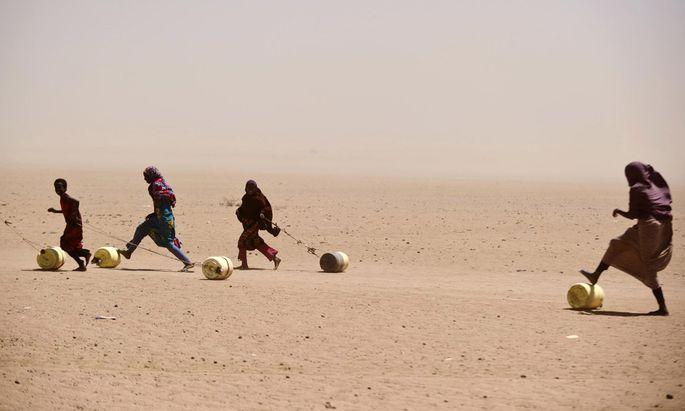 Wasser auf Rädern: In Kenias Wüstenregionen muss Wasser mühselig über weite Strecken herbeigebracht werden