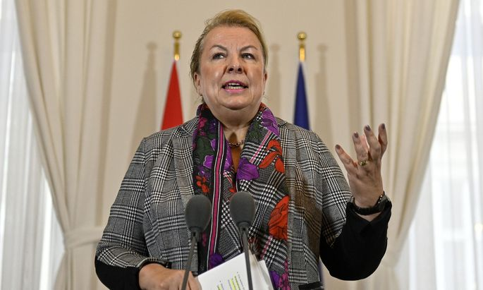 Sozialministerin Beate Hartinger-Klein kündigte Änderungen bei der Neuregelung der Sozialhilfe an.