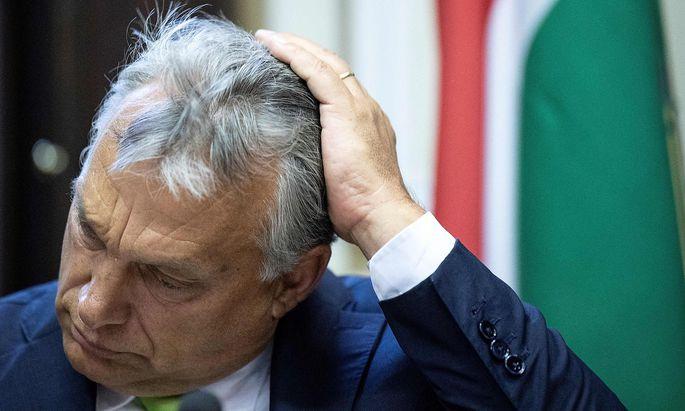 Viktor Orbán setzt auf Manfred Weber als künftigen EVP-Spitzenkandidaten für die EU-Wahl.