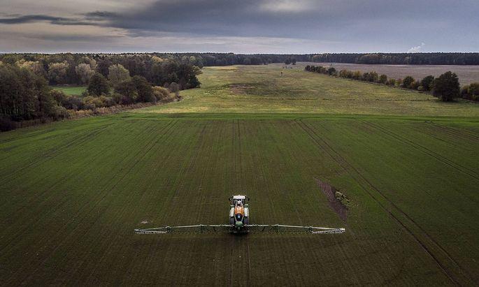 Eine Selbstfahrspritze aufgenommen beim Verteilen von Pflanzenschutzmittel auf einem Feld Doebern