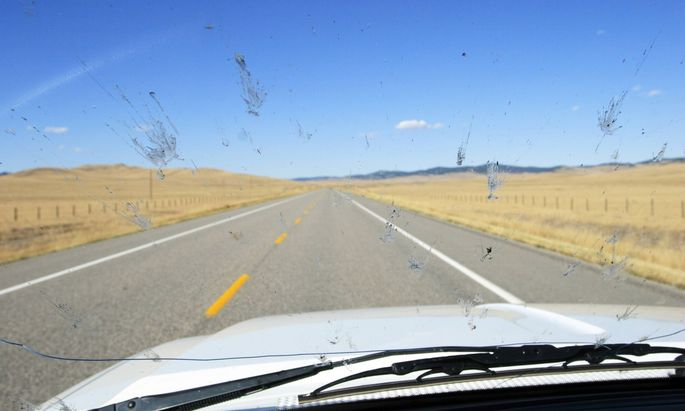 Je weniger Verkehr auf der Autobahn ist, umso mehr Insekten kleben auf jeder Windschutzscheibe.