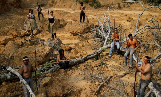 Die gerodeten Amazonas-Gebiete sind nicht nur ein Problem für die dort lebenden indigenen Völker in Brasilien, wie die Mura.