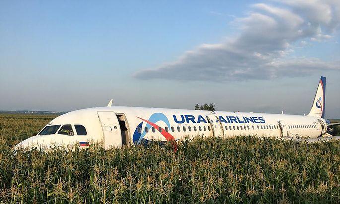 Das Flugzeug landete unsanft in einem Maisfeld bei Moskau.