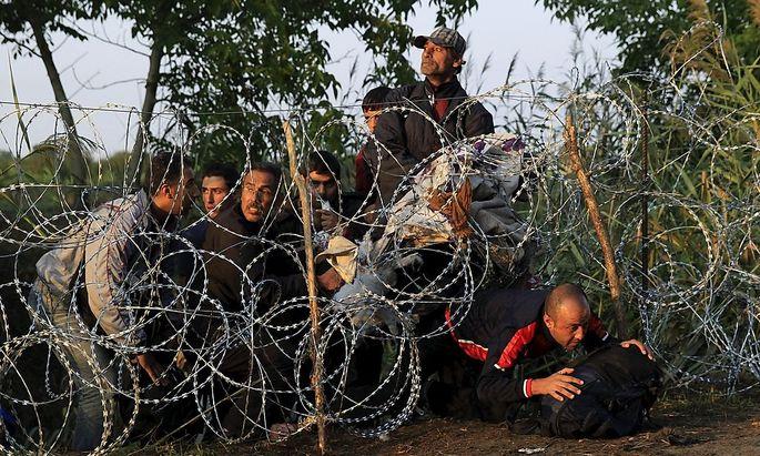 Trotz Zaun versuchen Flüchtlinge von Serbien nach Ungarn zu gelangen.
