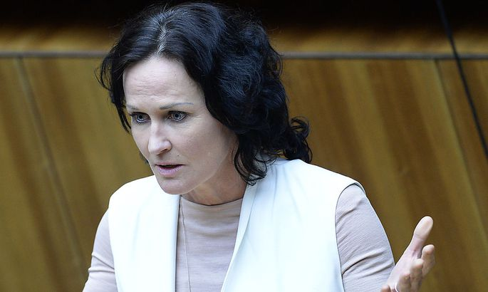 Vor Nationalrat: Grüne wählen Kraker nicht