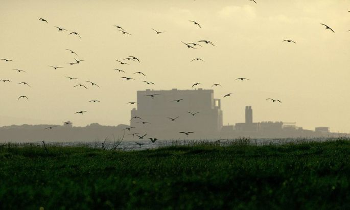 Curlews Numenius arquata flying into roost with Hinkley point Nuclear power station in background