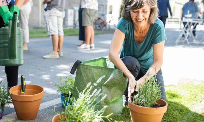 Die Parteichefin der Wiener Grünen, Birgit Hebein, will (politisch) mehr Grün in den Weiten der Wiener Außenbezirke, wo die meisten Stimmen in Wien zu holen sind.